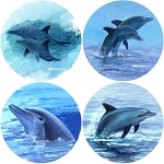 AS2030 Coasterstone Coasters Dolphins Assortment Set of 4