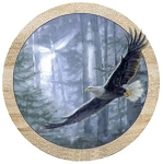 Soaring Eagle Thirstystone Coasters, Set of 4, TS62R