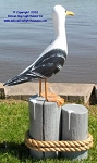 3750100 Large Seagull - Carved Wood on Pilings, 35
