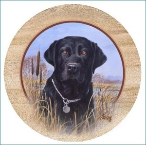 T.S. Killen's Black Lab Thirstystone Coasters, Set of 4