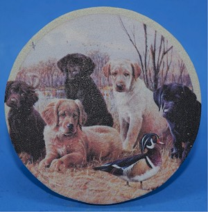 Marsh Madness Thirstystone Coasters, Set of 4